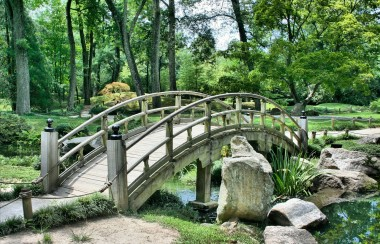 wooden-bridge-across-river-in-forest