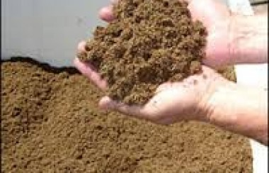 hands-cradling-peat-moss-which-looks-like-sand
