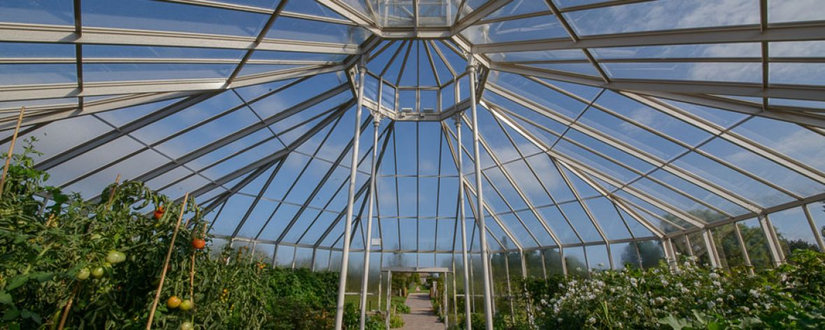 RHS Hyde Hall Glass Roof From Inside - A Bespoke Greenhouse Designed by Hartley Botanic