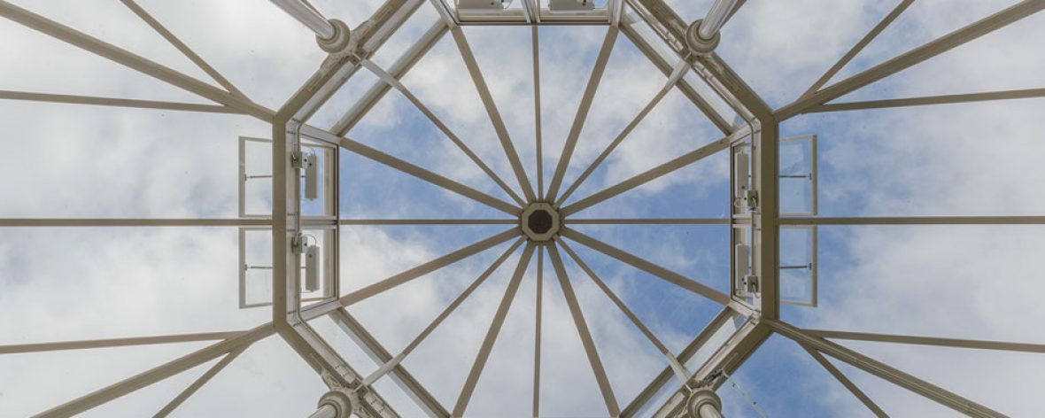 RHS Hyde Hall Roof From Below - A Bespoke Greenhouse Designed by Hartley Botanic