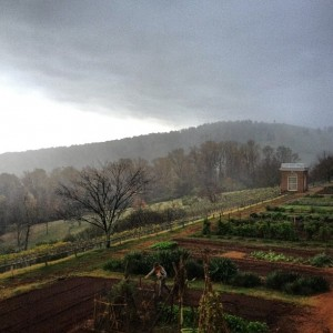 Sowing a cover crop in a sudden storm