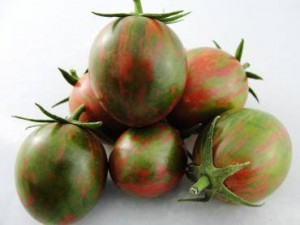 Tomato 'Artisan,' Johnny's Selected Seeds - Alice