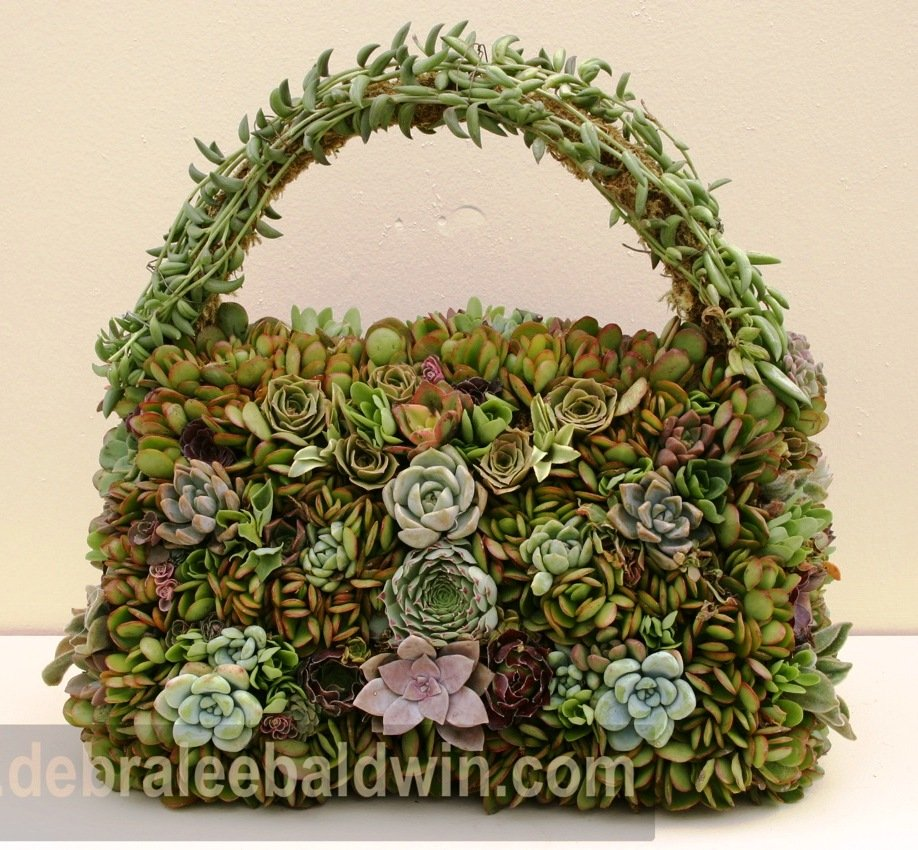 Or how about a purse? Give succulents what they need and you can do anything.