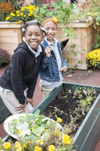 school gardening in Brooklyn - August